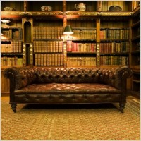 couch & library